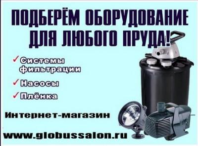ВСЁ для ПРУДА !  Полный ассортимент оборудования для строительства и ухода за прудом в интернет магазине – доставка в регионы. - НАСОСЫ для ФОНТАНА И ВОДОПАДА; - ПЛЕНКА для ПРУДА ПВХ;  - ФИЛЬТРЫ дл ПРУДА; - ПЛЕНКА для ПРУДА БУТИЛКАУЧУКОВАЯ; - ПРУД/