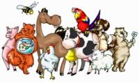 В нашей аптеке можно приобрести ветпрепараты ведущих отечественных и зарубежных производителей для кошек, собак, домашнего скота, лошадей, птиц, экзотических животных, пчел./